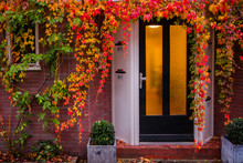 Beautiful Entrance Into The House With Orange Leaves Around It. Golden Autumn In Amsterdam.