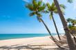 hammock hang on palm tree. Landscape of summer season in tropical beach.