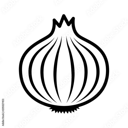 Photo Bulb onion or common onion vegetable line art vector icon for food apps and webs
