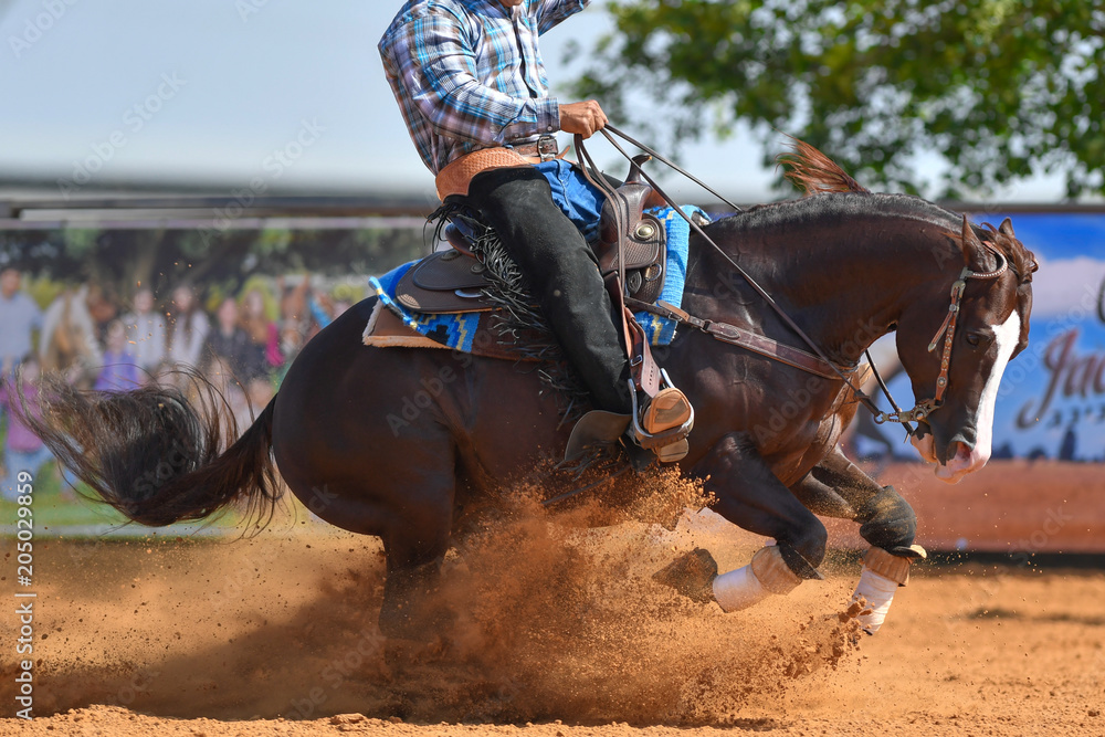 Fototapety, obrazy: The side view of a rider in jeans, cowboy chaps and checkered shirt on a reining horse slides to a stop in the red clay an arena.