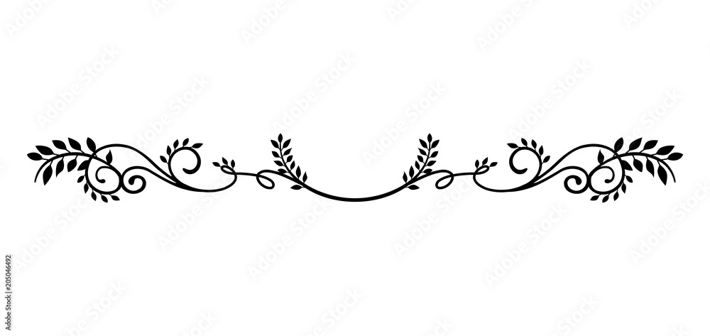 Fototapeta decorative vintage border illustration (natural plant)