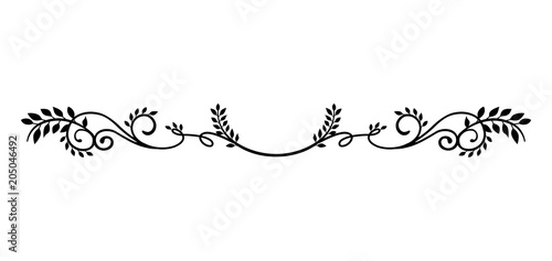 Photo decorative vintage border illustration (natural plant)