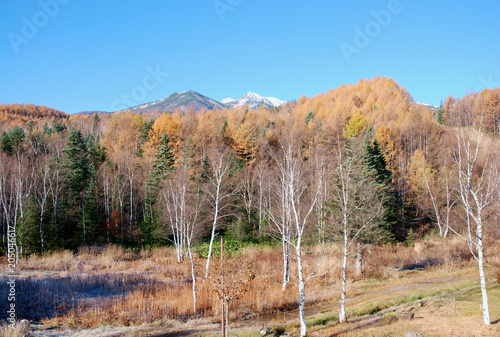 Foto op Aluminium Zalm Norikura mountains in late autumn season / 晩秋の乗鞍高原(乗鞍岳)