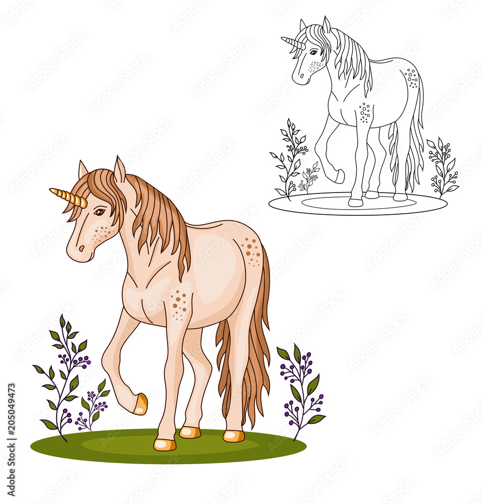 Coloring Page Beautiful Cute Unicorn On The Grass Foto Poster