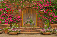 Beautiful Botany Garden Decora...