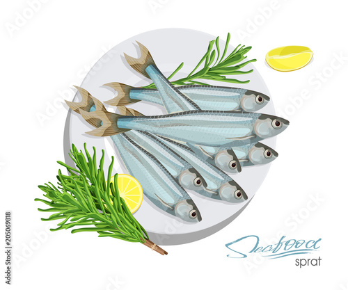 Photo Sprat sketch vector fish icon