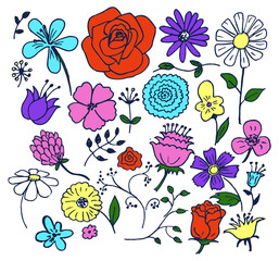 Flowers Hand Drawn Elements Vector Illustration