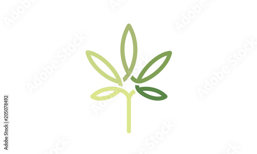 Fotografie, Obraz  Cannabis Leaf Line Art Logo design inspiration