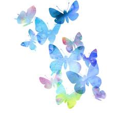 Watercolor Drawing Butterflies