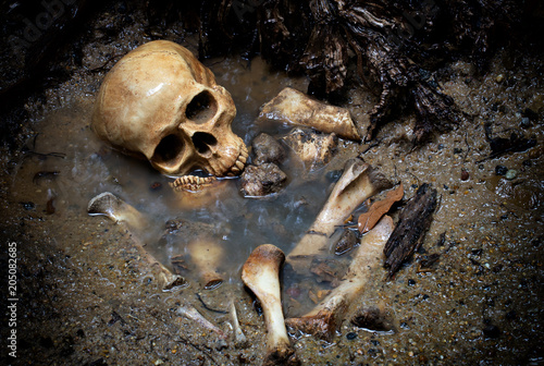 Skull and bones in pit which has flood in raining day on scary graveyard area Canvas Print