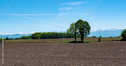 Poster Blauw countryside landscape with Pyrenees mountain range in the background