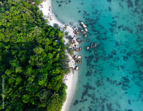 Tuinposter Luchtfoto aerial view of landscape with rainforest near the rocky beach and turquoise sea