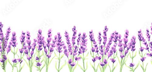 Wzór kwiaty lawendy. Akwareli naturalna ilustracja Provence ziele