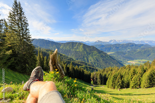 Shoes and Legs of Hiker in front of alpine Flowers, enjoying beautiful view of Mountains