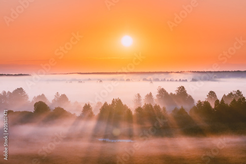 Foto auf AluDibond Rotglühen Amazing Sunrise Over Misty Landscape. Scenic View Of Foggy Morning