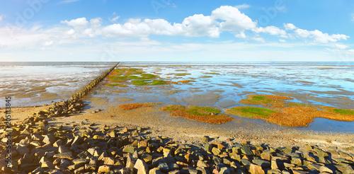 Foto auf Gartenposter Nordlicht Nordseeküste - Watt