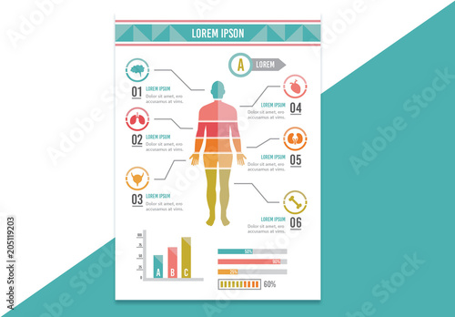 Remarkable Human Body Diagram Chart Layout Kaufen Sie Diese Vorlage Und Finden Wiring Digital Resources Instshebarightsorg
