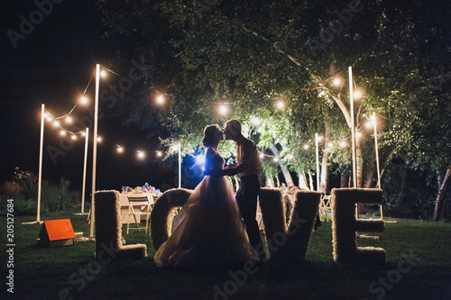 Fotografie, Obraz  Beautiful newlyweds kiss tenderly at a wedding party with lamps