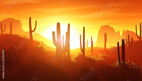 Stickers pour porte Orange eclat desert at sunset, rocky desert arizona with cacti under the setting sun, 3D rendering