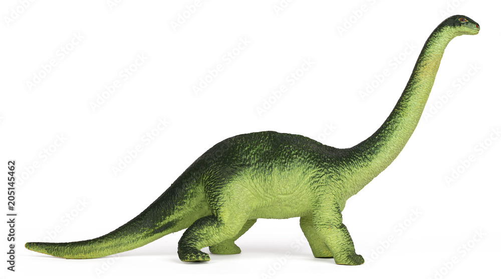 Green dinosaur diplodoc plastic toy model isolated on white background