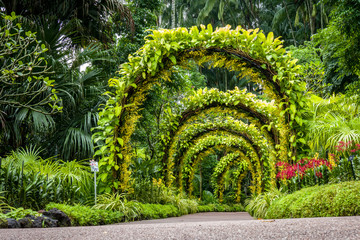 Panel Szklany Do Spa orchid arch in Singapore botanical gardens