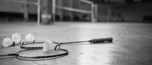 Badminton Ball (shuttlecock) A...