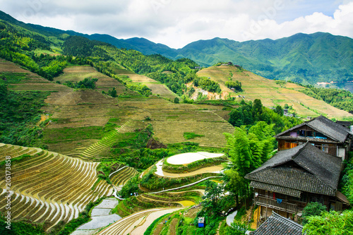 In de dag Asia land Asian rice terrace landscape on a cloudy day