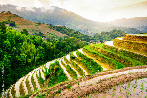 In de dag Asia land Stunning sunset at the rice terrace near Guilin in China