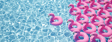 3D Rendering. A Lot Of Flamingo Floats In A Pool