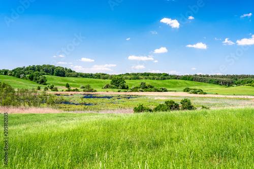 Deurstickers Weide, Moeras Grüne Felder und Wiesen in der Uckermark bei Angermünde