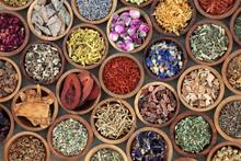 Herbal Medicine Used In Altern...