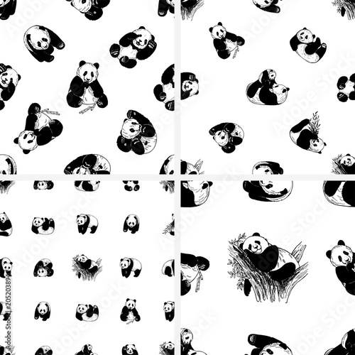 Fotografija  Set of seamless patterns of hand drawn sketch style giant pandas isolated on white background