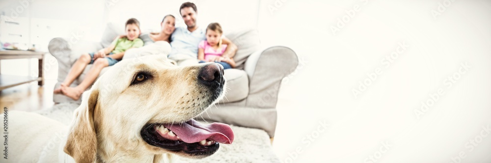 Fototapety, obrazy: Happy family sitting on couch with their pet yellow labrador in