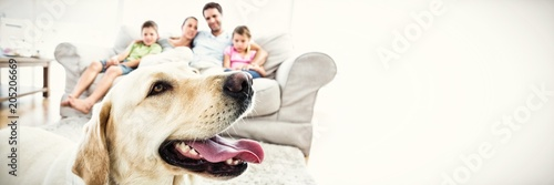 Valokuvatapetti Happy family sitting on couch with their pet yellow labrador in