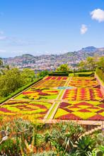 Botanical Garden In Funchal, M...