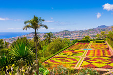 Botanical Garden In Funchal, M...