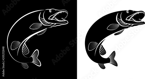 pike fish - clip art illustration Canvas