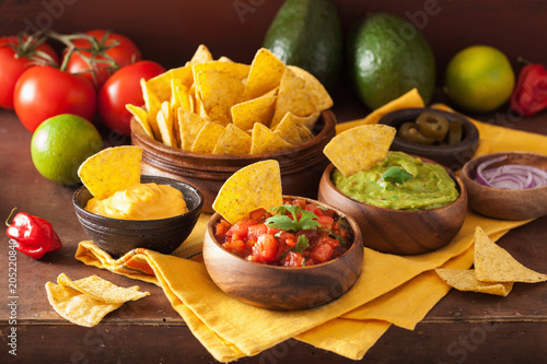 mexican nachos tortilla chips with guacamole, salsa and cheese dip Wallpaper Mural