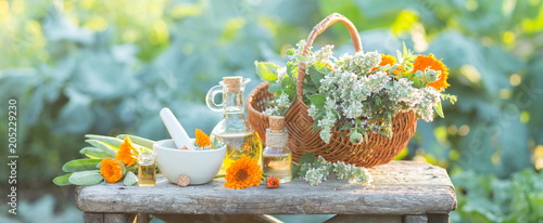 Photo  Spa composition with Fresh herbs, calendula and different types of oils