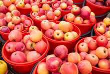 Bright Colored Apples In Buckets