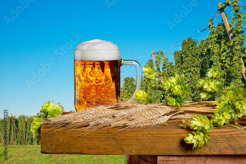 Foto op Canvas Bier / Cider Glass of beer and raw material for beer production