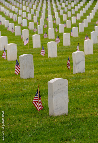 Keuken foto achterwand Begraafplaats Hundreds of white grave markers at a national cemetary with small flags