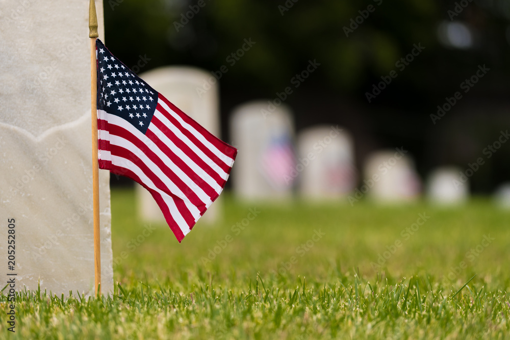 Fototapeta Small American flags and headstones at National cemetary- Memorial Day display