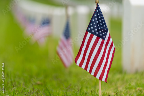 8e883af0b66 Small American flags and headstones at National cemetary- Memorial Day  display
