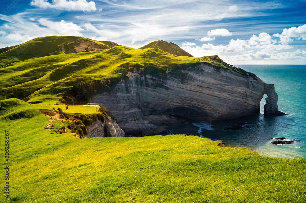 Fototapety, obrazy: Irland, Küste