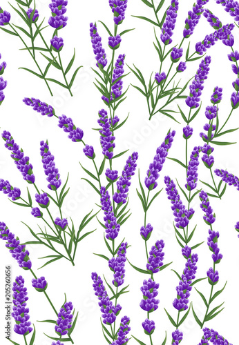 Dekoracja na wymiar seamless-pattern-of-purple-lavender-flowers-watercolor-style-flowers-elegant-flowers-vector-background-lavender-background-for-text-card-template-invitation-banner-business-cards