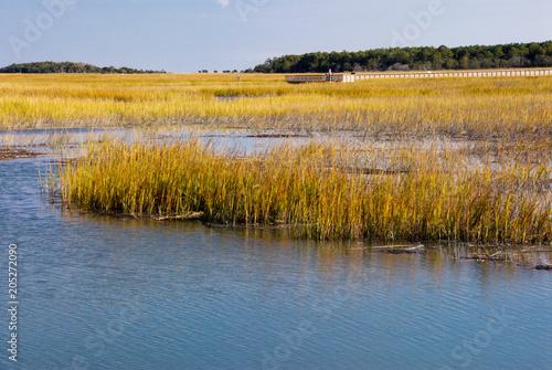 Fotografia, Obraz Salt Water Marsh in Murrells Inlet South Carolina USA
