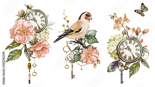 Photo  steam punk watercolor  Illustration with roses, clock, clockwork, feathers, jewelry, bird, Flowers