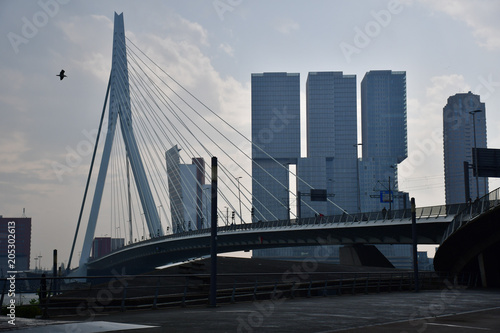 Staande foto Rotterdam rotterdam bridge sky