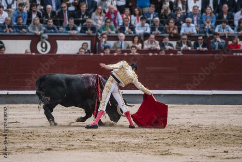 Foto op Aluminium Stierenvechten Man bullfighter dressed in bullfighting costume.